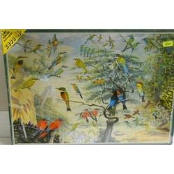 JH Art. EE1/2001 Birds...